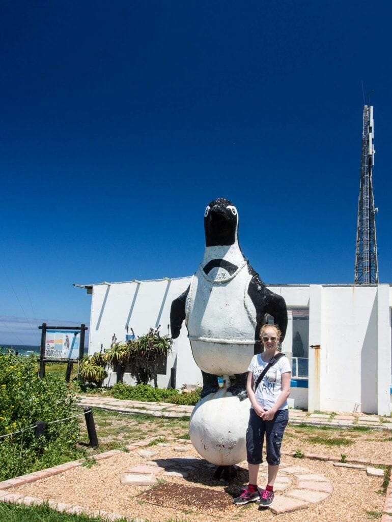 Pinguin-Rettungsstation in Cape St. Francis