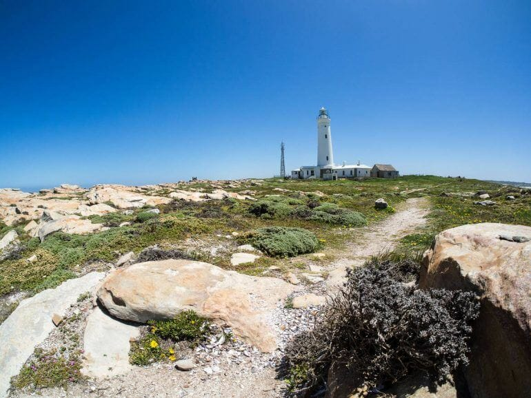 Seal Point Lighthouse in Cape St. Francis