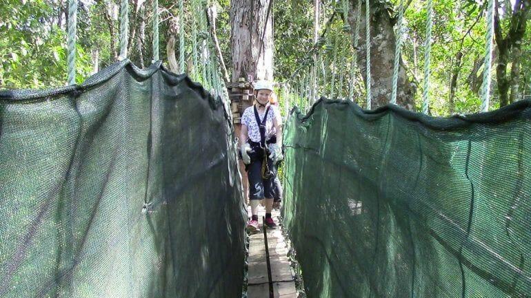 Sandra bei der Tsitsikamma Canopy Tour im Tsitsikamma Nationalpark