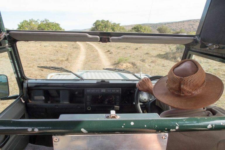 Safari durch das Schotia Private Game Reserve