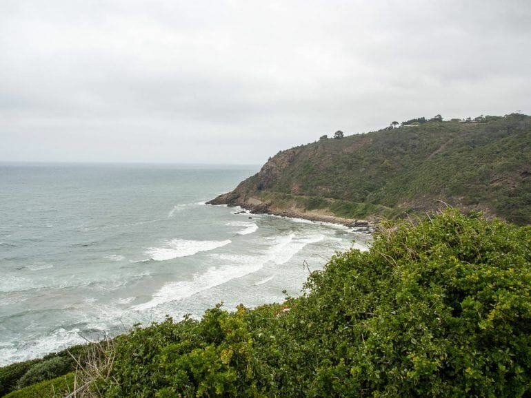 Dolphin Lookout Point