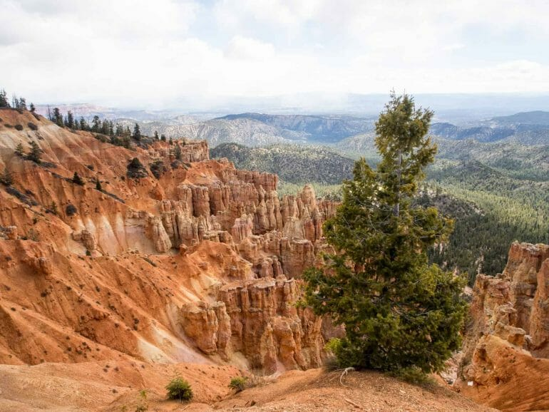 Ponderosa Point im Bryce Canyon