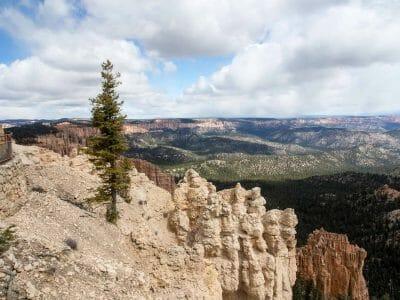 Rainbow Point im Bryce Canyon