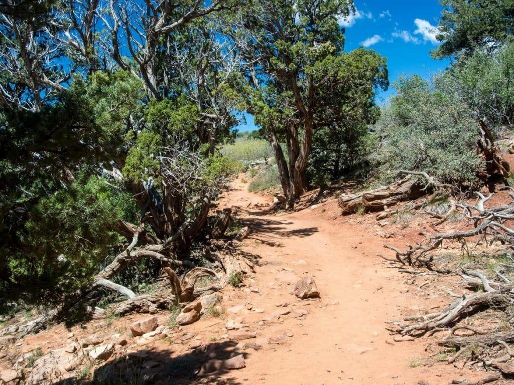 Trail zum Observation Point im Zion Nationalpark