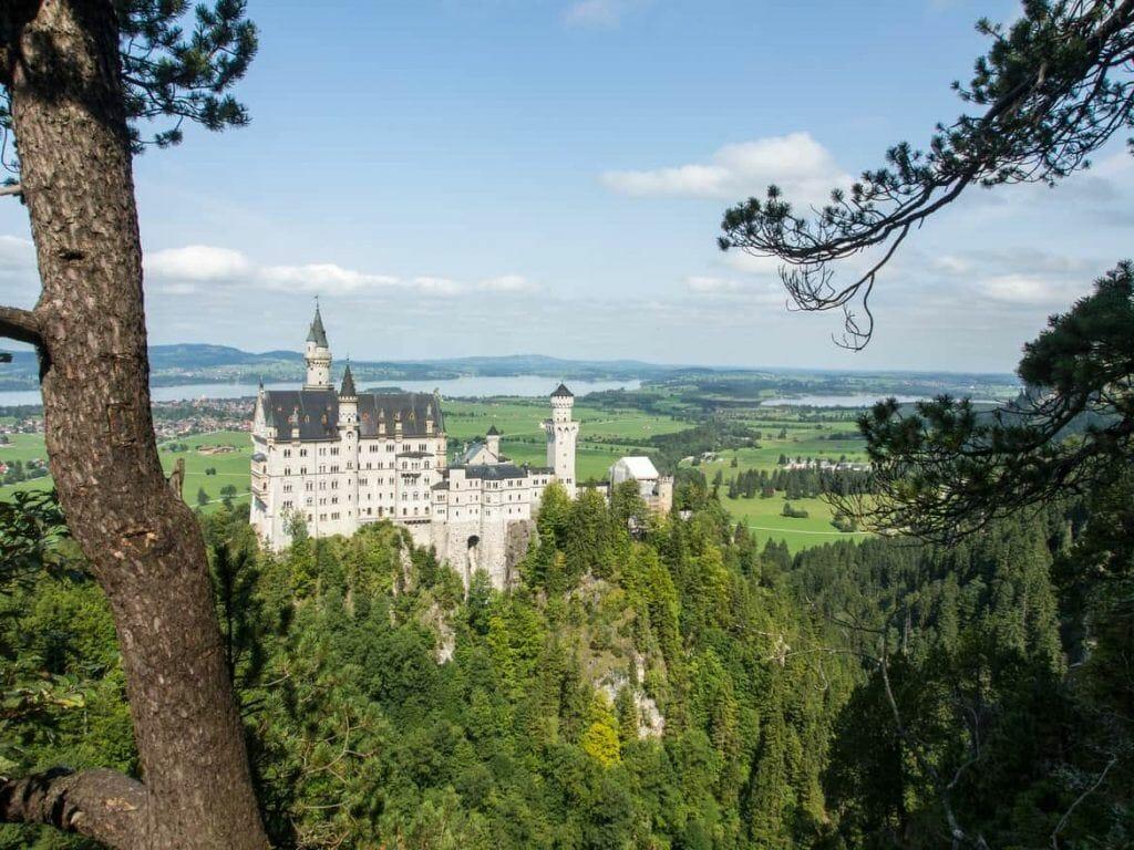 Blick auf Schloss Neuschwanstein vom Aussichtspunkt im Wald aus