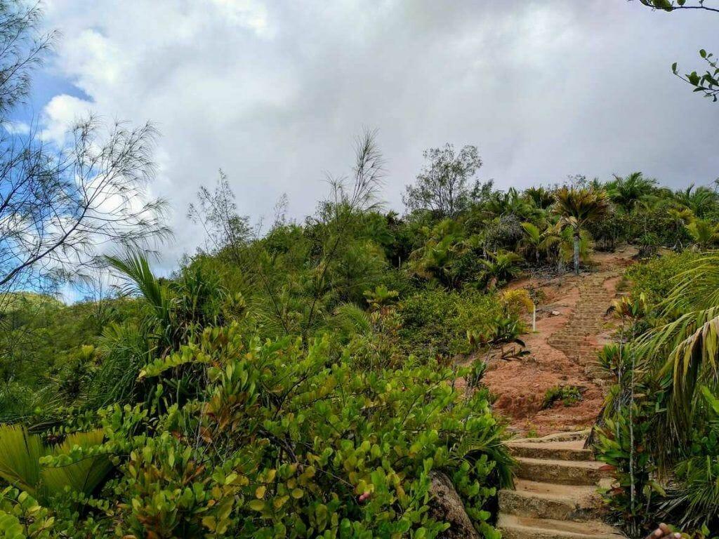 Stufen zum Aussichtspunkt Fond Ferdinand auf Praslin Seychellen