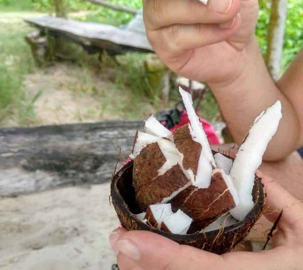 frische Kokosnuss an der Petite Anse auf La Digue Seychellen