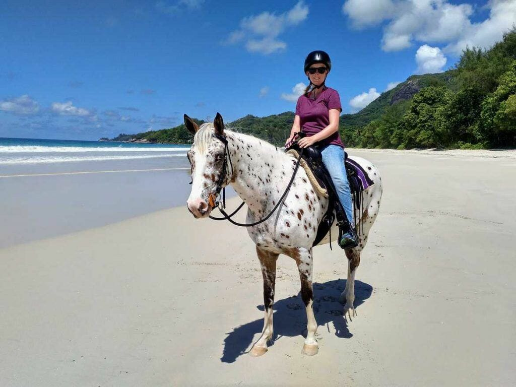 Stute Yazela von Turquoise Horse Trails Mahe Seychellen