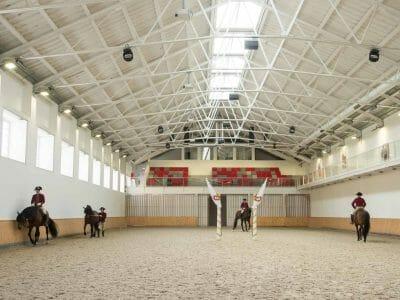 Morgendliches Training Hofreitschule in Belem Lissabon Portugal