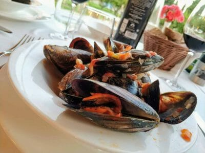 Muscheln in der Finca Son Roig auf Mallorca