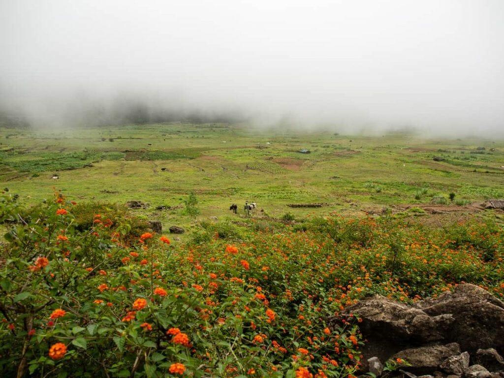 Fleißige Bauern im Cova Krater auf Santo Antao Kapverden