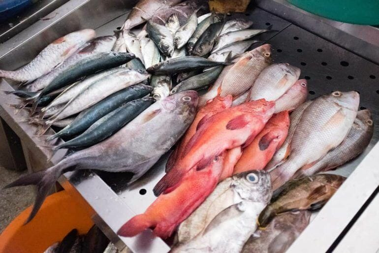 Fische auf dem Markt auf Praia Santiago Kapverden