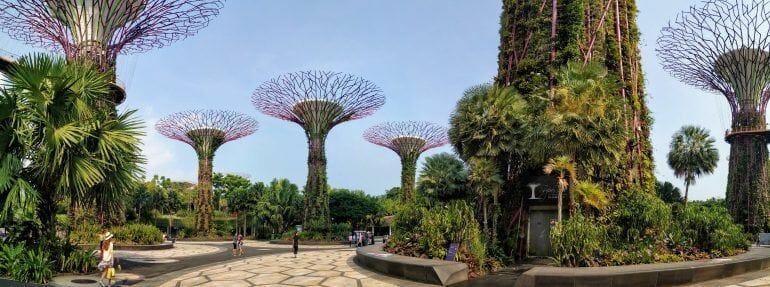 Panorama Supertrees Singapur