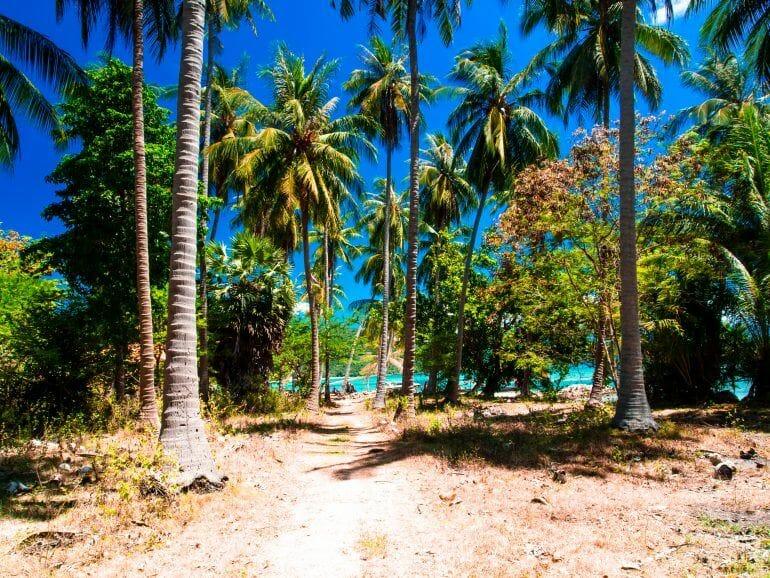 Weg zur Bucht auf Koh Tan Thailand
