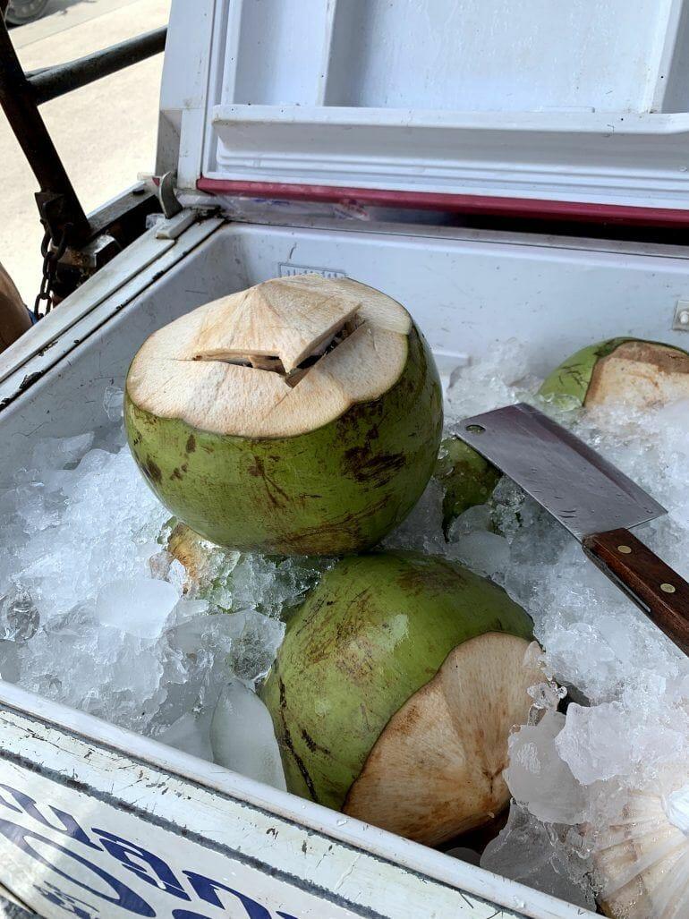 Kokosnuss auf Koh Samui Thailand