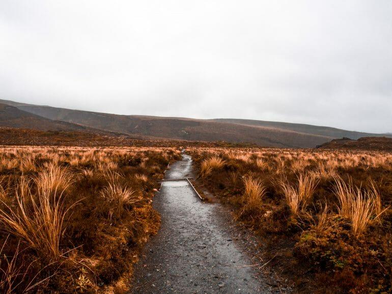 Tongariro Nationalpark Neuseeland