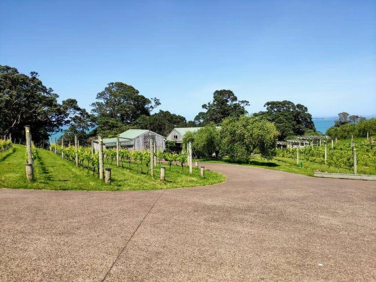 Kennedy Point Winery Waiheke Island Neuseeland