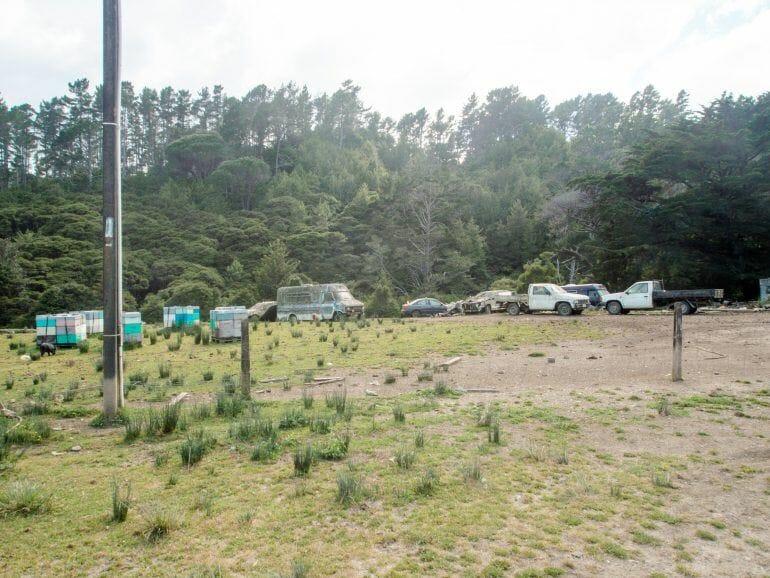 Road 309 Coromandel Pinunsula Neuseeland