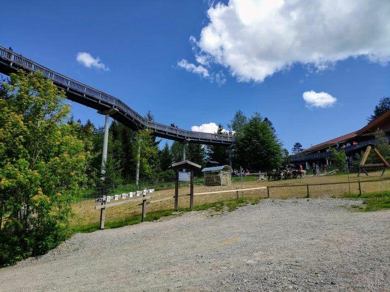 Baumwipfelweg Sankt Englmar Deutschland
