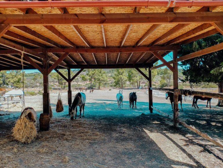 Elpida Ranch Rhodos