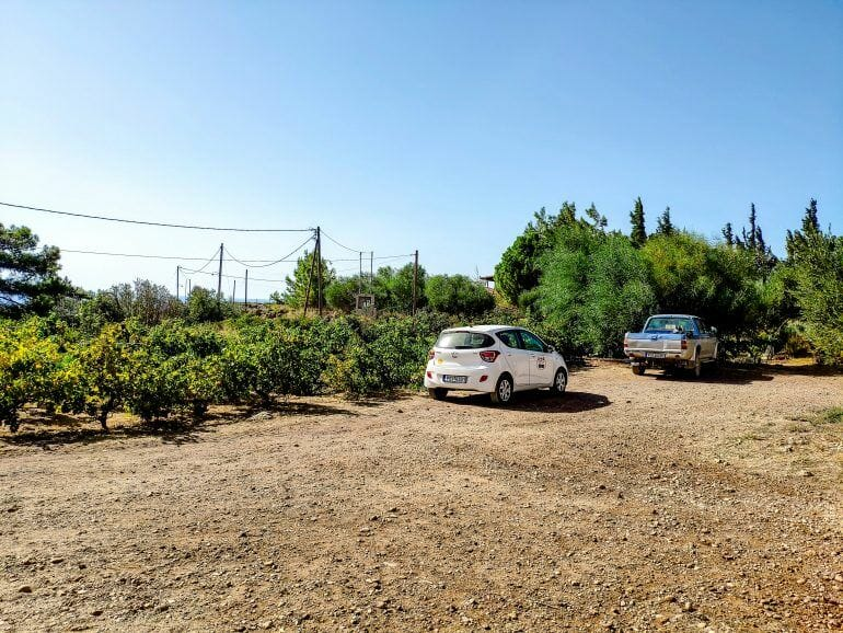 Olive Tree Farm Rhodos